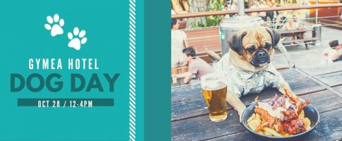 Dog Day with Pound Paws at the Gymea Hotel